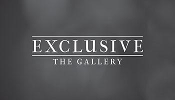 Exclusive the Gallery